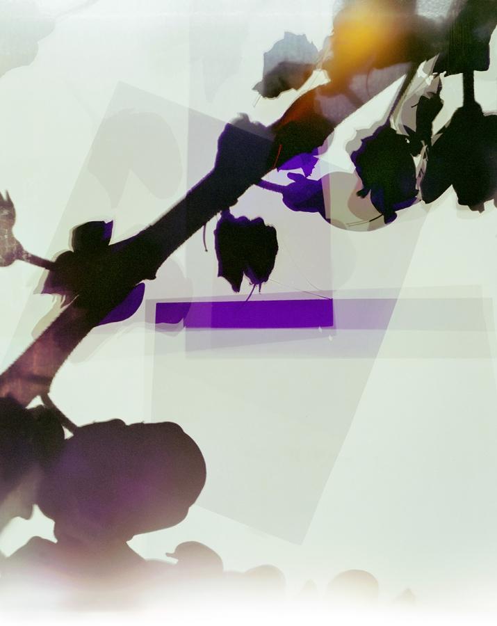 03.Grasharve