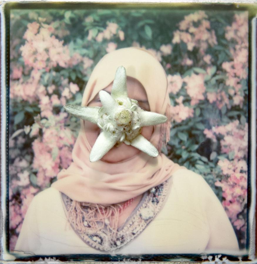 17.Edelweiss